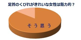 アンケート調査結果_円グラフ